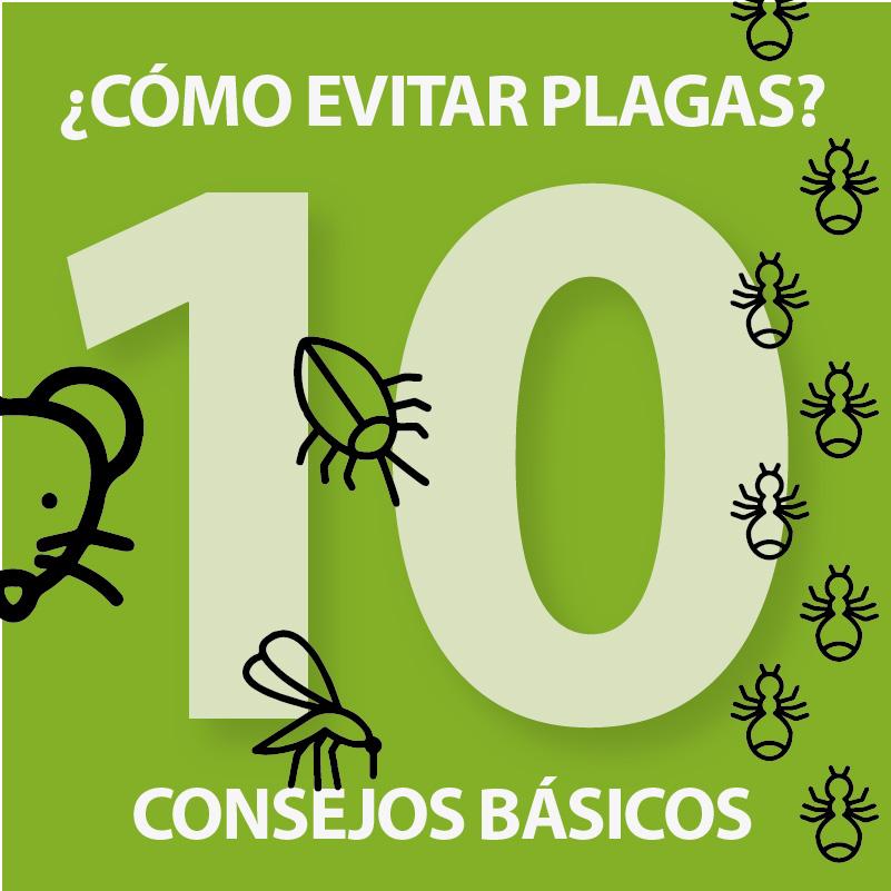 Consejos útiles para evitar plagas por Campos Serrano Biólogos en Murcia y Almería