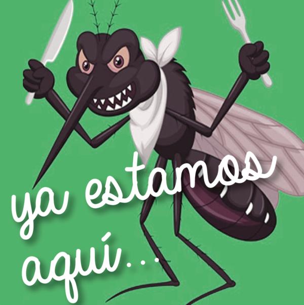 Consejos para prevenir plagas de moscas y mosquitos en Murcia y Almeria por Campos Serrano Biologos