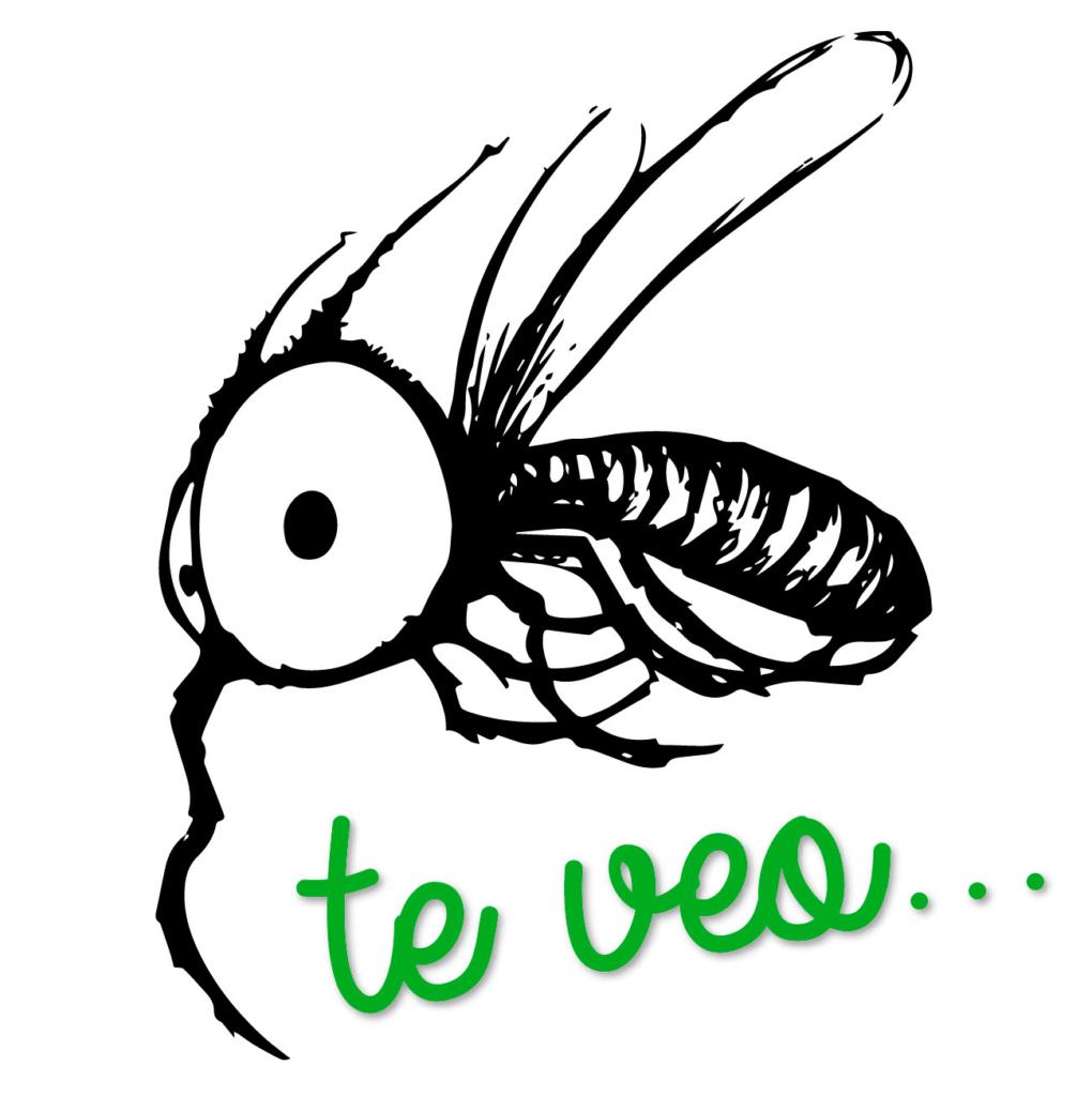 Plagas-de-mosquito-tigre-en-Murcia-consejos-utiles-Campos-Serrano-biologos