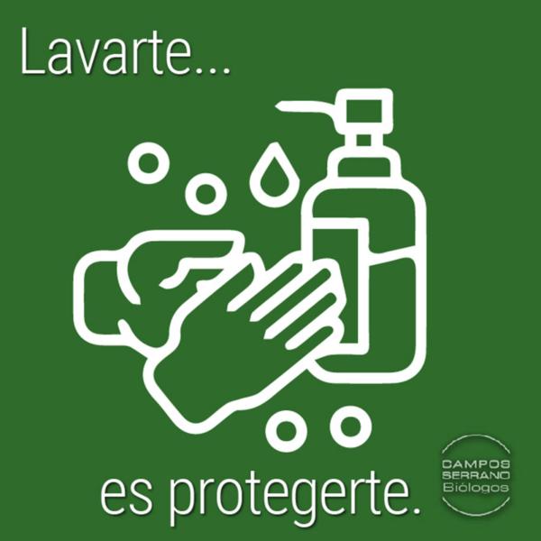 Lavarse-las-manos-evita-enfermedades-contagiosas-por-Campos-Serrano-Biologos-en-Murcia-y-Almería